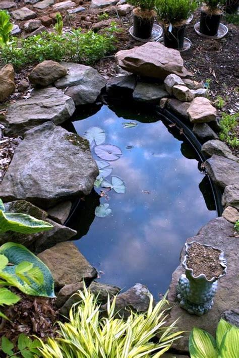 creating  garden pond  create  green oasis interior