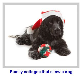family cottages that allow a dog
