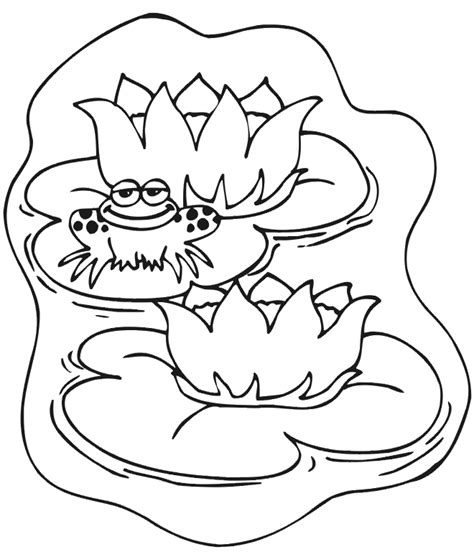Frog Animal Coloring Pages For Kids Frog Colouring Pages