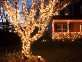 buyers guide for outdoor christmas lighting diy outdoor