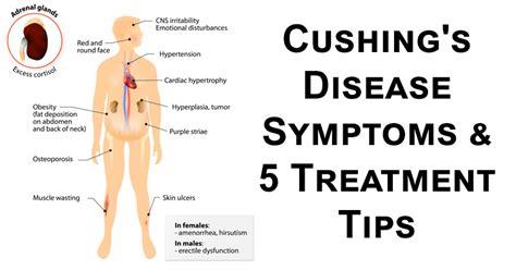 cusions disease cushing s disease symptoms 5 treatment tips david