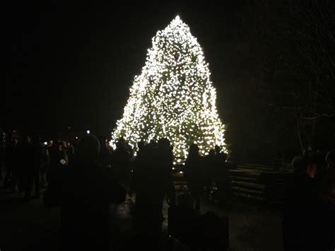 colonial williamsburg christmas lights hundreds gather at colonial williamsburg for annual tree lighting daily press