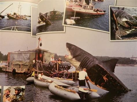 jaws biography channel documentary 17 best images about jaws on pinterest discovery channel