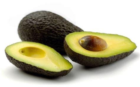 avocado in cucina avocado propriet 224 e benefici uso in cucina e cosmesi