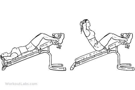 Incline Bench Crunch Decline Bench Crunches Sit Ups Workoutlabs