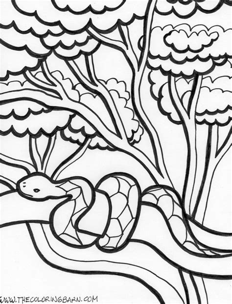 cottonmouth snake coloring page snake bite coloring pages