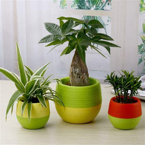 jual pot mini tanaman plastik bunga hias kaktus sukulen