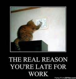 Funny Memes About Work - reason you are late
