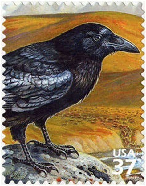 themes in black rook in rainy weather 17 best images about postage st on pinterest sts