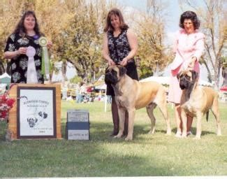 Home Sweeper Sweepstakes - redwood empire mastiffs club specialty winners 2004