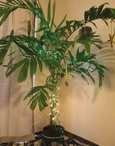 indoor christmas lights ideas   nautical beach
