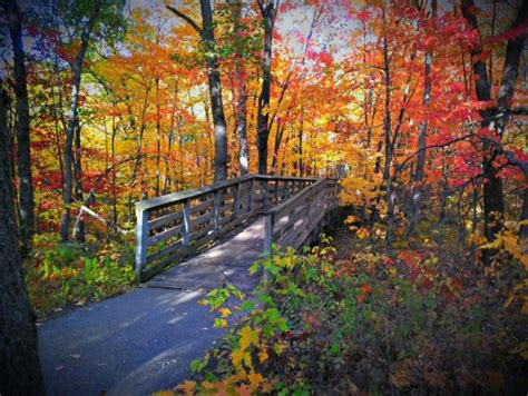 minnesota colors 50 best images about duluth mn fall colors on