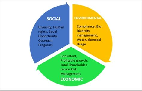 Csr Mba Skool by Bottom Line For A Sustainable Business Business
