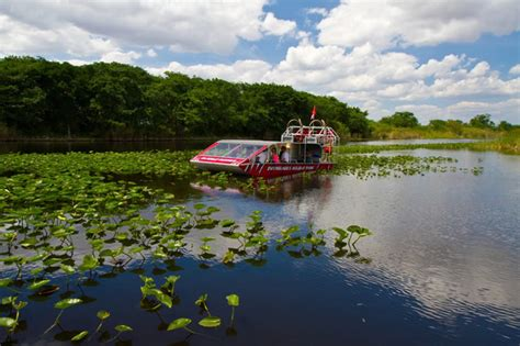 airboat rides fort lauderdale fort lauderdale the venice of america amg realty
