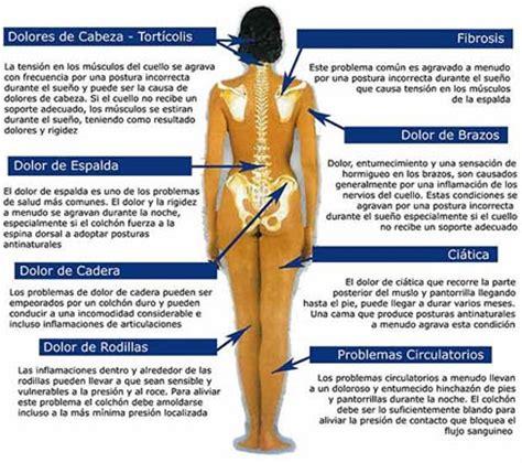 dolor espalda colchon centro de la columna vertebral la elecci 243 n colch 243 n y