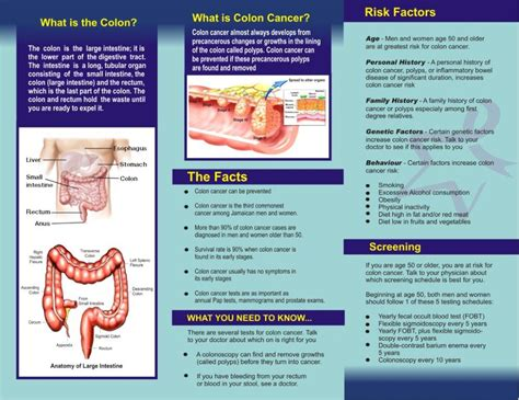 Colon Cancer Brochure Renanlopes Me Cancer Brochure Template