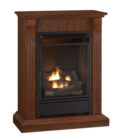Gas Fireplace Heaters Free Standing Gas Fireplaces Kvriver