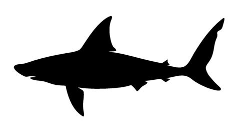 shark silhouette clipart best