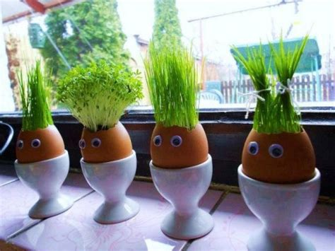 Eggshell Planters by How To Make Eggshell Planters How To