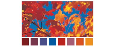 fall color schemes prepossessing 80 fall color scheme design decoration of