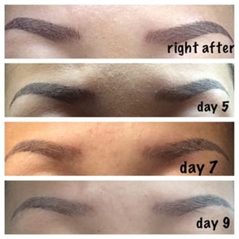 tattoo eyebrows recovery angela y s reviews los angeles yelp