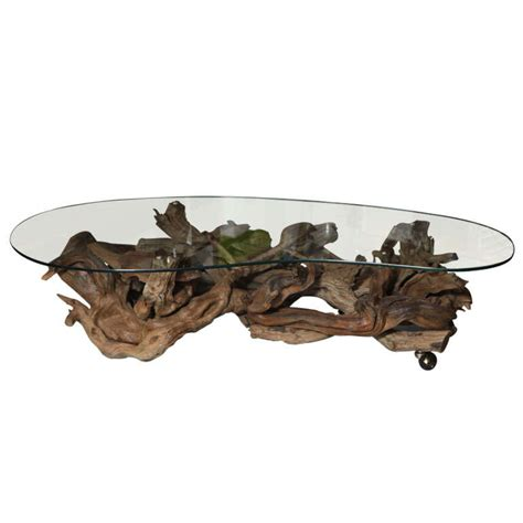 Driftwood Glass Coffee Table 1960 S Driftwood Coffee Table At 1stdibs