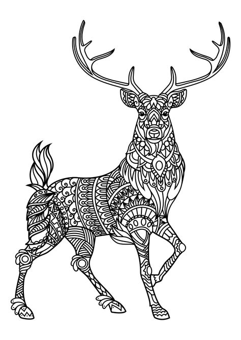 coloring book of animals animal coloring pages pdf coloring cat and