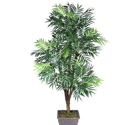 where can i purchase artificial trees on cape cod arcadia silk plantation buy arcadia silk plantation products in uae dubai abu dhabi