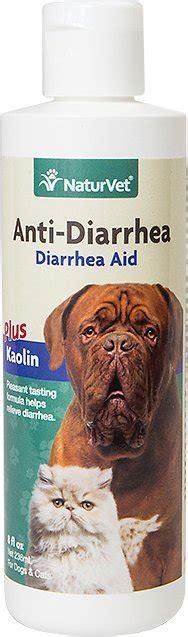 anti diarrhea for dogs naturvet anti diarrhea cat liquid supplement 8 oz bottle