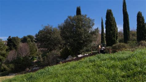 jardin botanico bcn jard 237 n bot 225 nico web de barcelona