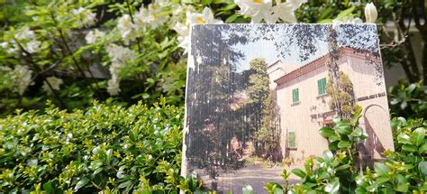 Wanddeko Mit Fotos by Wanddeko Selber Machen Foto Auf Holz Ernsting S Family