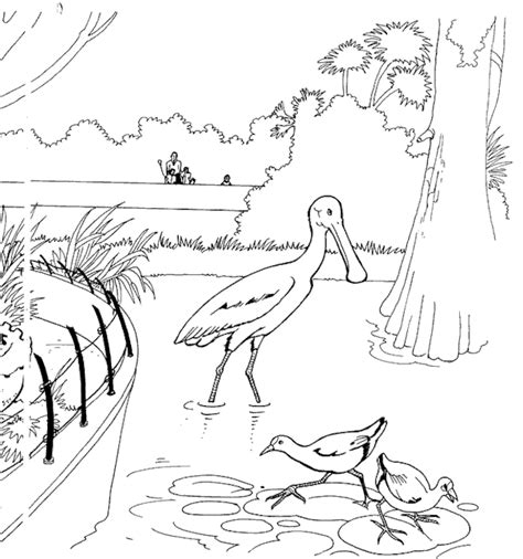 coloring page zoo zoo coloring pages coloringpages1001