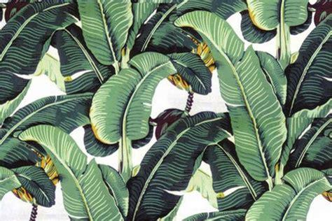 tropical palm leaf wallpaper wallpapersafari
