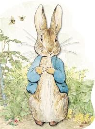peter rabbit party birthday party ideas for kids