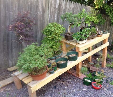 bonsai bench 1000 images about bonsai stands on pinterest bonsai