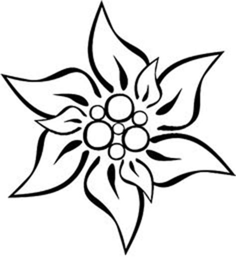 edelweiss flower coloring page edelwei 223 wall mural pixers 174 we live to change