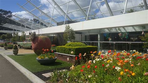 edens garden eden gardens play area cafe and lots more macquarie
