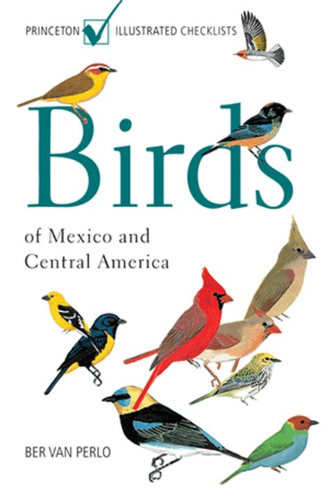 libro guia para identificar aves canicularis libro birds of mexico and central america