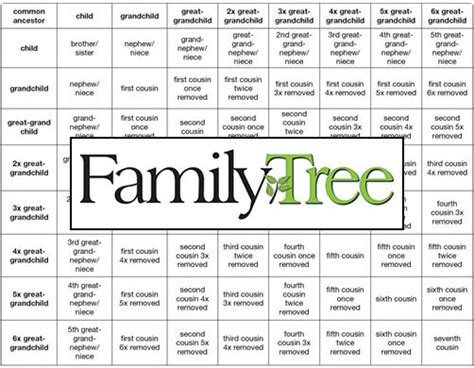 the marshall family or a genealogical chart of the descendants of marshall and elizabeth markham his sketches of individuals and notices of families connected with them classic reprint books easy family relationship chart for your genealogy research