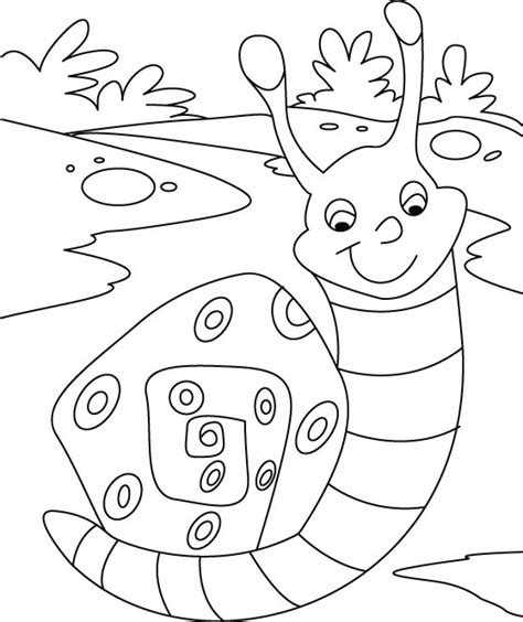 garden snail coloring page snail coloring page www pixshark com images galleries