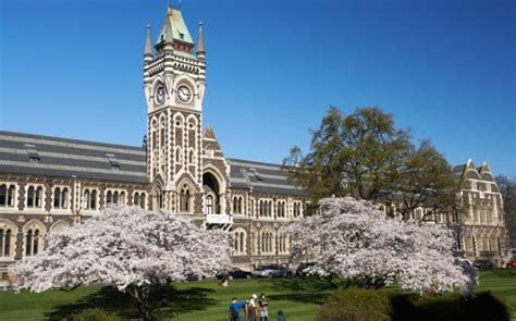 Mba Colleges In New Zealand by Of Otago Otago Mba