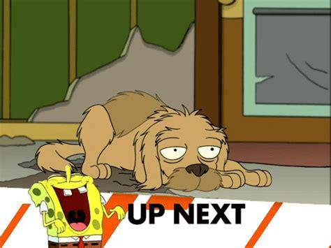 Spongebob Laughing Meme - image 304852 inappropriate timing spongebob banner