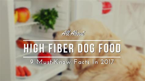 high fiber puppy food all about high fiber food 9 must facts in 2017 hi5dog
