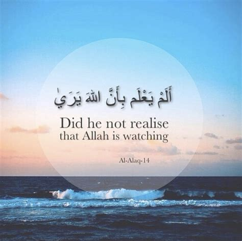 hendrik kata kata bijak  al quran
