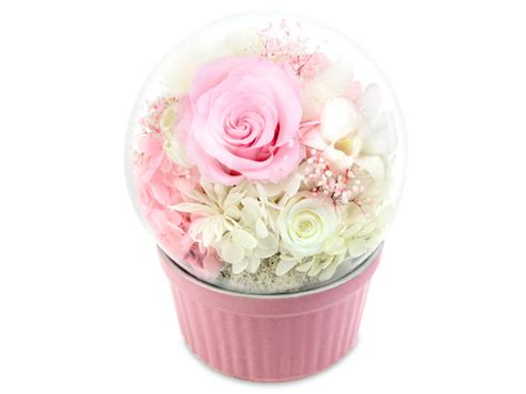 Box A Single David Pink Preserved Flower For Gift preserved forever flower musical preserved flower box m28 l36515961 give gift