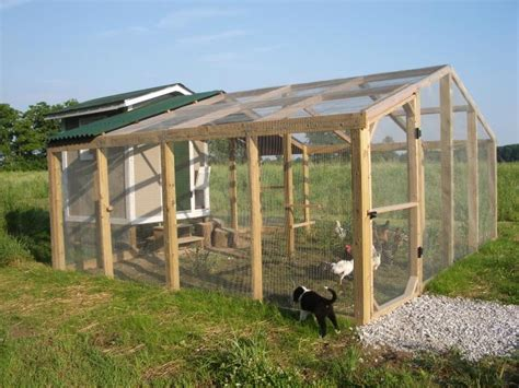 best chicken coop design backyard chickens best chicken coop design backyard chickens chicken coops