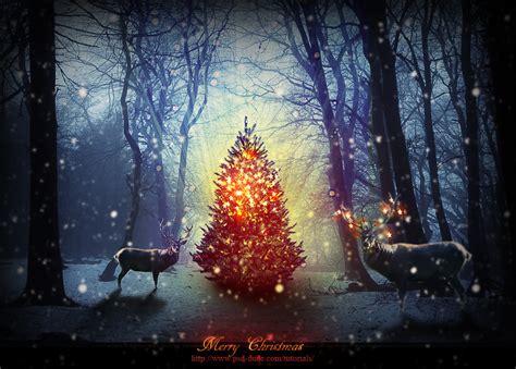 Charming 12 Feet Christmas Trees #1: Magic-christmas-night-photoshop-manipulation-tutorial.jpg