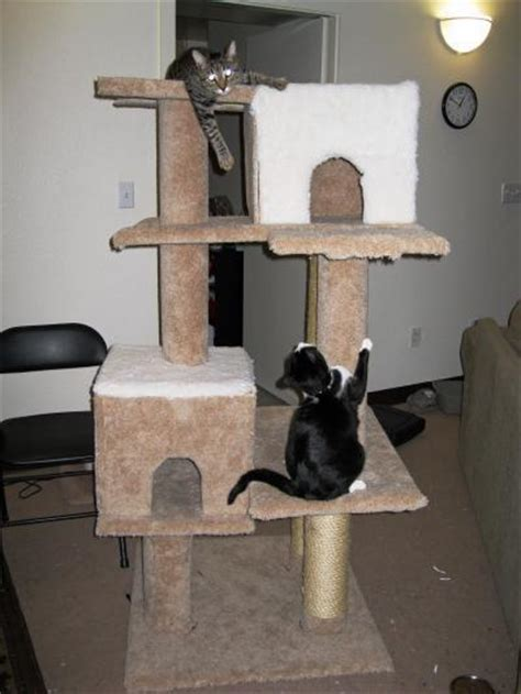 making   cat tree thriftyfun