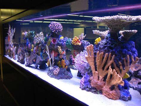 Tumbuhan Coral Artifisial Dekorasi Aquarium artificial custom reef inserts for aquariums midwest custom aquarium