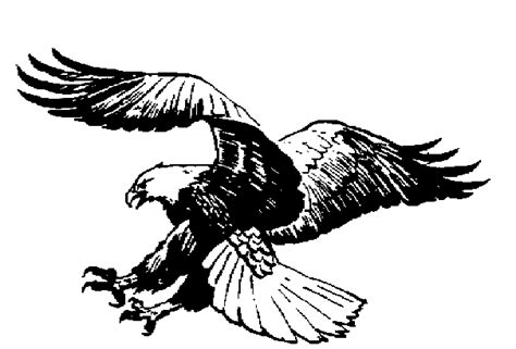 Free Eagle Clipart Black And White clipart pictures